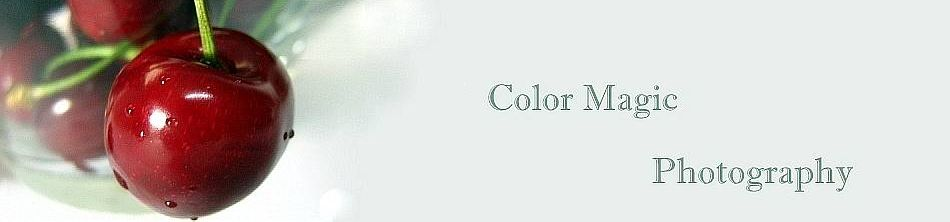 Color Magic - Photography